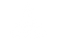 footer logo | Marketplace for digital contents | brand brahma